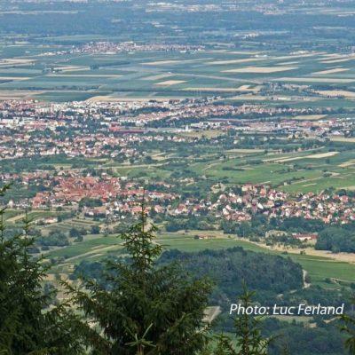 Alsace du mont saint odile