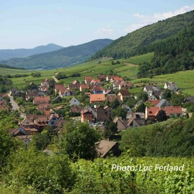 Village d'Alsace.2