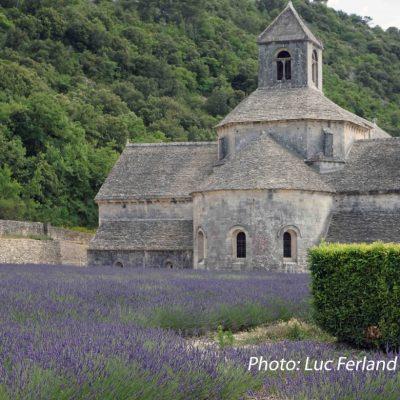 Abbaye Notre-Dame de Sénanque, Provence.1