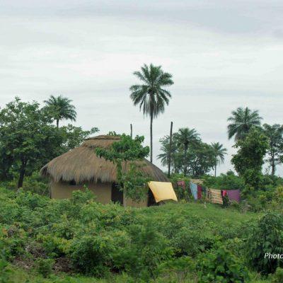 Guinée-10