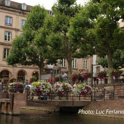 Strasbourg.5